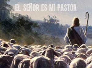 Salmo100